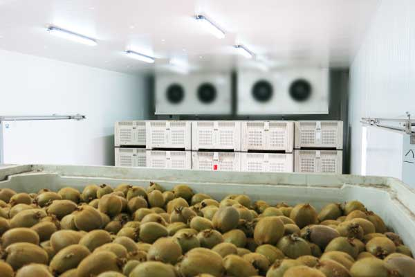 冷库价格:加热或冷却介质传人或带出的热量q2是待求量的图片415