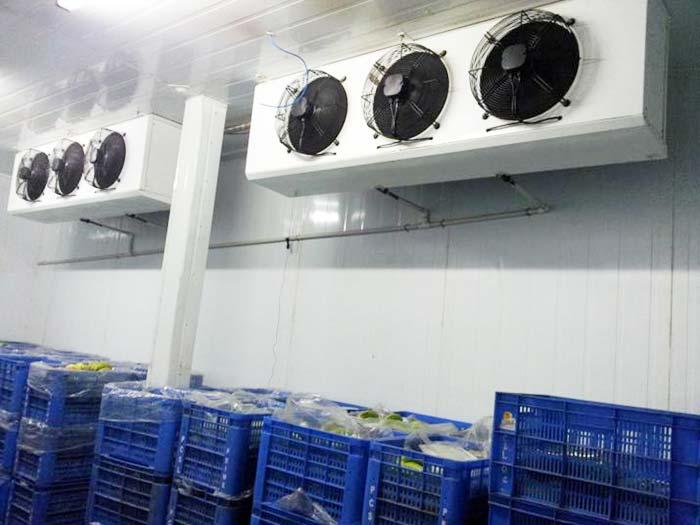 小型冷库:关于提高冰箱压缩机效率的思考_no.628