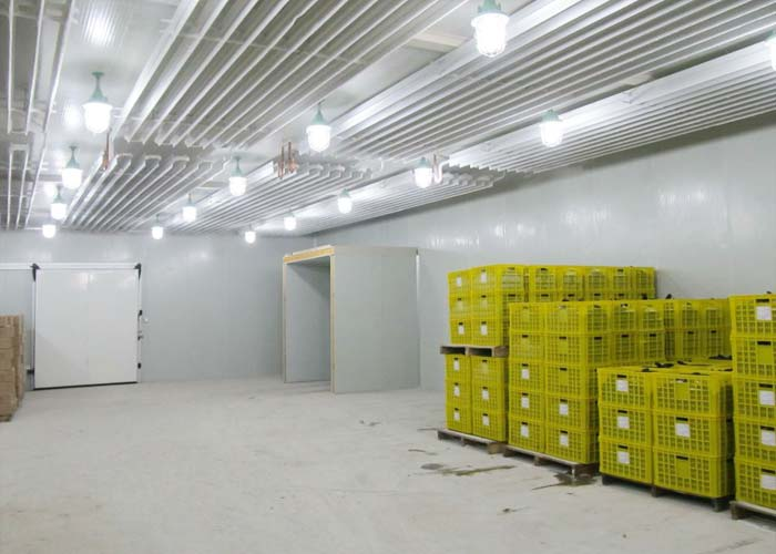 冷库建造:冰箱存储特别受到关注_no.980